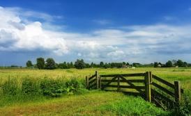 Een polder-aanpak voor de gemeentelijke zorginkoop